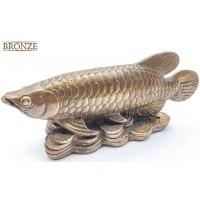 Бронзовая рыба на монетах