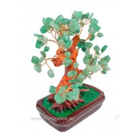 дерево Бонсай  Нефритовое 20см