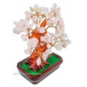 """дерево Бонсай  """"Цветущая сакура""""  20см"""