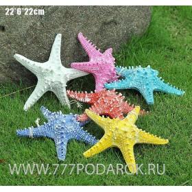 Декоративная Морская звезда  22 см (комплект 6шт)
